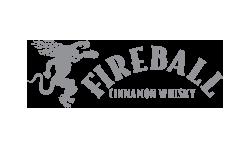 Fireball Logo DreamBig Creative Minneapolis, MN