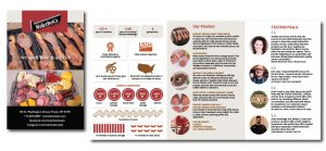 Nolecheks Brochure Design
