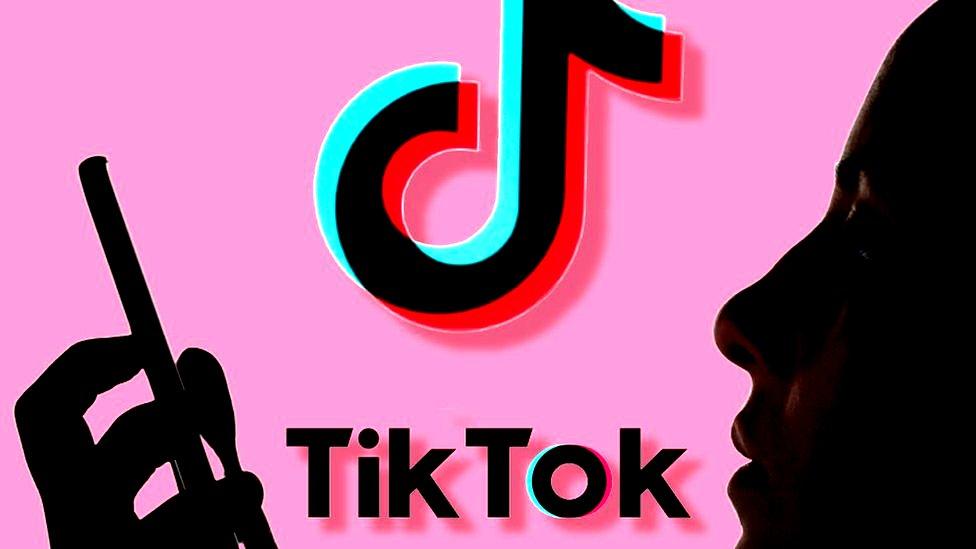 TikTok For Custom Website Traffic Engagement